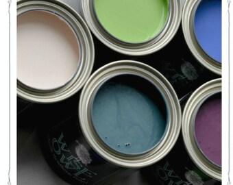 Wise Owl Chalk Synthesis Paint - 16oz-32 oz