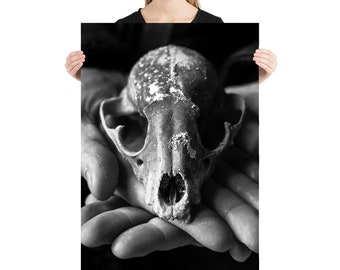 Black and White Skull Printed on Stretched Canvas or Poster Print, Wall Art Home Decor