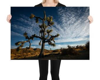 Joshua Tree Printed on Stretched Canvas or Poster Print, Wall Art Home Decor