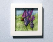 Bee and Spanish Lavender Flowers Original Watercolor Illustration, Framed