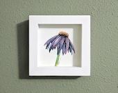 Echinacea Flower Original Watercolor Illustration, Framed