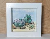Succulents Cactus Desert Rose Pebbles Original Watercolor Illustration, Framed