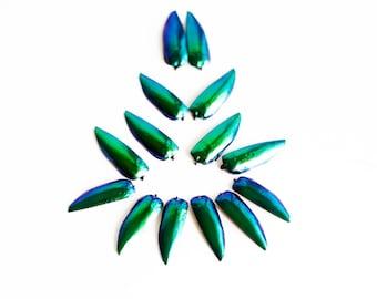 Wholesale Lots Iridescent Green Blue Yellowish Jewel Beetle Elytra Wings 100 g