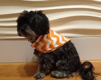 Twists & Turns Dog Bandana