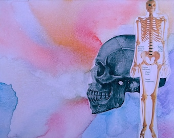 Skull and Skeleton Watercolor Canvas