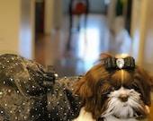 Dogs Pets Dress, dogs pets Halloween costume, pets party dress, dogs pets Black dress