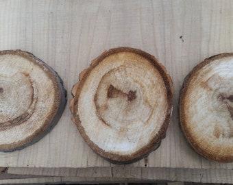 Birch wood slices