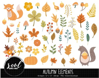 COD471-Fall clipart/autumn cliparts/plants clipart/Commercial use/Clipart Set/Vector Clipart/INSTANT DOWNLOAD