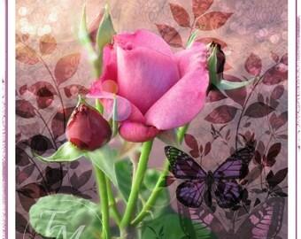 Sweet, Sweet Rose Art Card