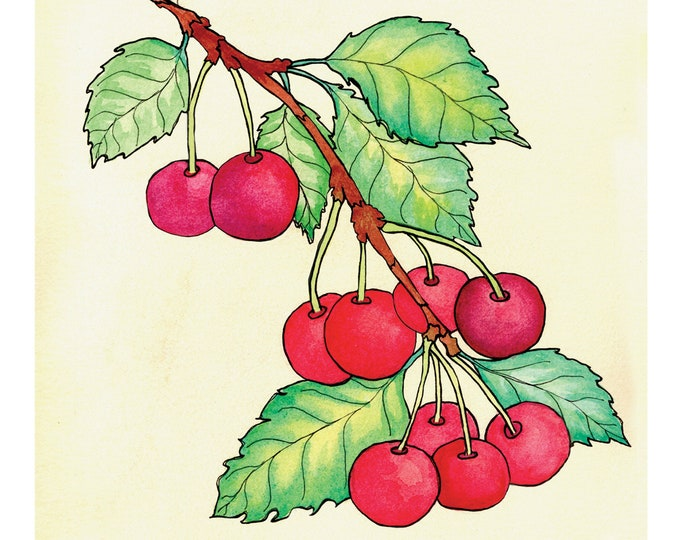 Cherries | Watercolor Botanical Print | 5x7 | 8x10