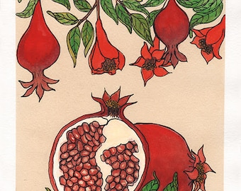 Pomegranate | Watercolor Botanical Print | 8x10 | 5x7