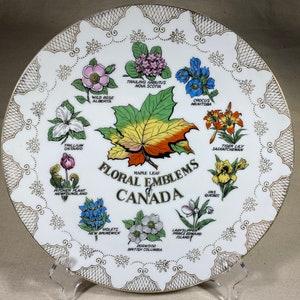 E5535 Vintage /'Floral Emblems of Canada/' Royal Winton Souvenir Plate