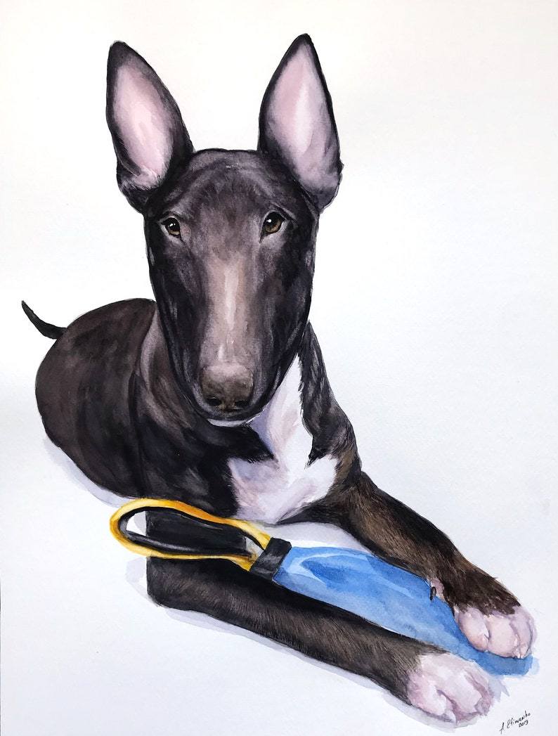 Bull terrier Custom painted pet portrait dog dad gift water color painting
