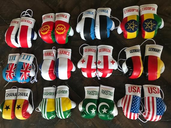 USA and Brazil Mini Boxing Gloves
