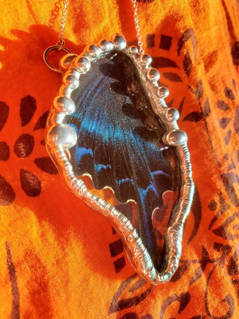 Real Papilio Bianor Butterfly Wing Pendy