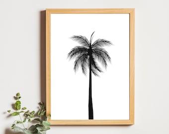 Palm Tree - Digital Print