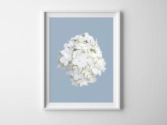 INSPIRATIONAL MODERN BOTANICAL ART BLUE HYDRANGEA FLOWER A4 POSTER PRINT GIFT
