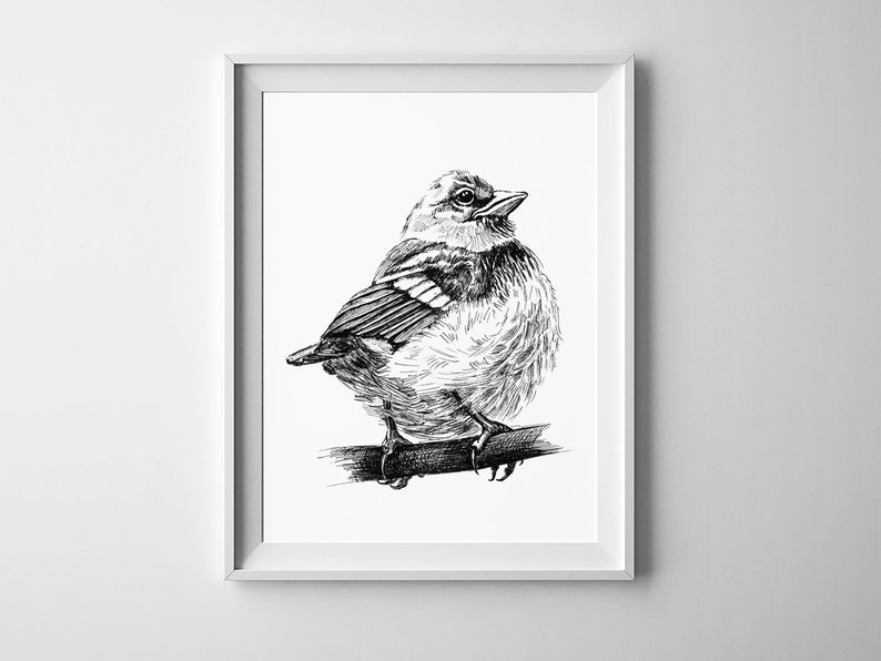 039cafdf50e Bird sketch Printable wall art Black and white Bird print Ink drawn sparrow  graphic poster Animal sketches poster Digital print