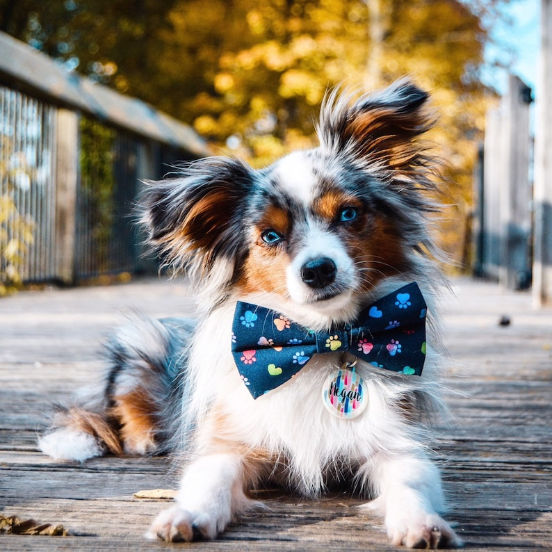 Green Signature Plaid  Dog Bow Tie  Cat Bow Tie  Pet Bow Tie