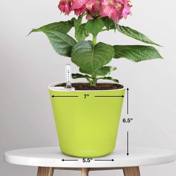 Window Garden 7 Aquaphoric Self Watering Planter. Indoor | Etsy