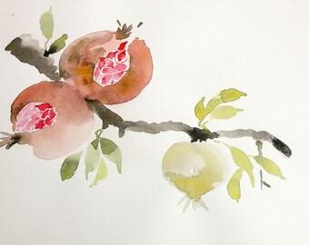 Pomegranate on a branch Digital print Art poster Watercolor digital print Poster wall Digital watercolor clip art Decor art home Fine art