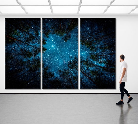 Stary Night in the Wild Nature Photography Canvas Print Art Decor