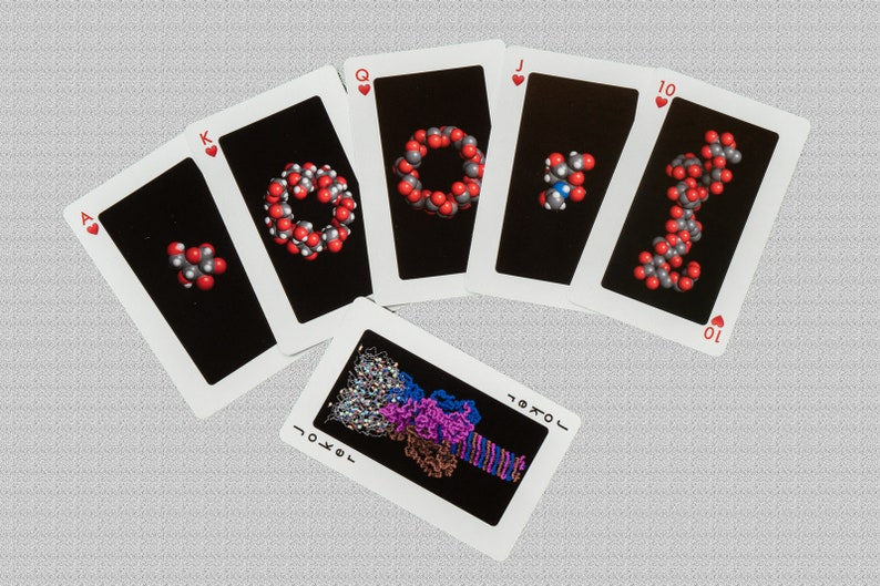 Macromolecule playing cards  for science education and image 0