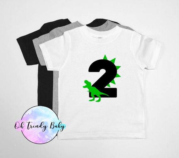 Second Birthday Shirt Dinosaur Birthday Shirt Birthday Tee