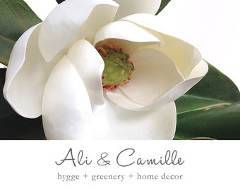 Magnolia Flower Etsy