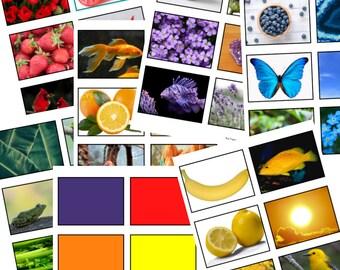 Montessori Color Sorting Cards