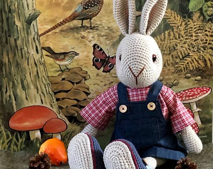 William a tough and sweet boy rabbit with red checkered blouse and denim garden pants - Handmade by Omanel