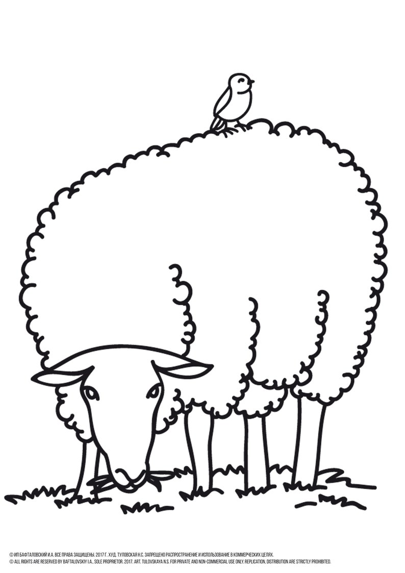 Sheep Coloring Page Printable Animal Coloring Pages Farm Etsy