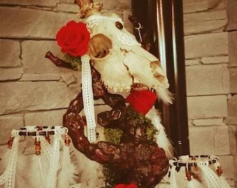 Skull decorated deer skull