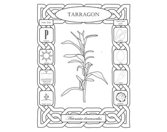 Items similar to Quick Reference Culinary Herbal Coloring Pages ...