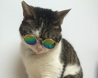 Cat sunglasses, pet-accessory, cat costume, kitty, fashion, instagram, small pet, circular, 90s, cool pet, rainbow