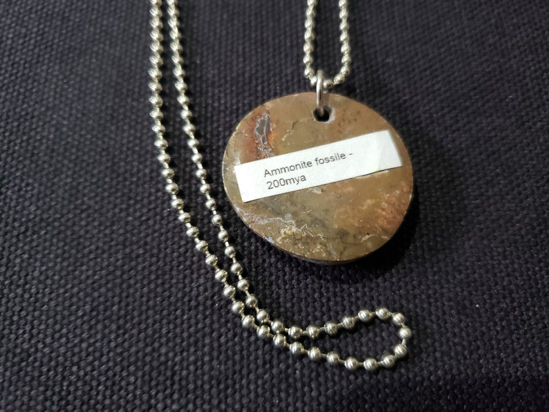archaeology  101 Fossil Rocks Fossil Jewelry Ammonite Necklace Ammonite Pendant Fossil Pendant Fossil Necklace Men 200 million years