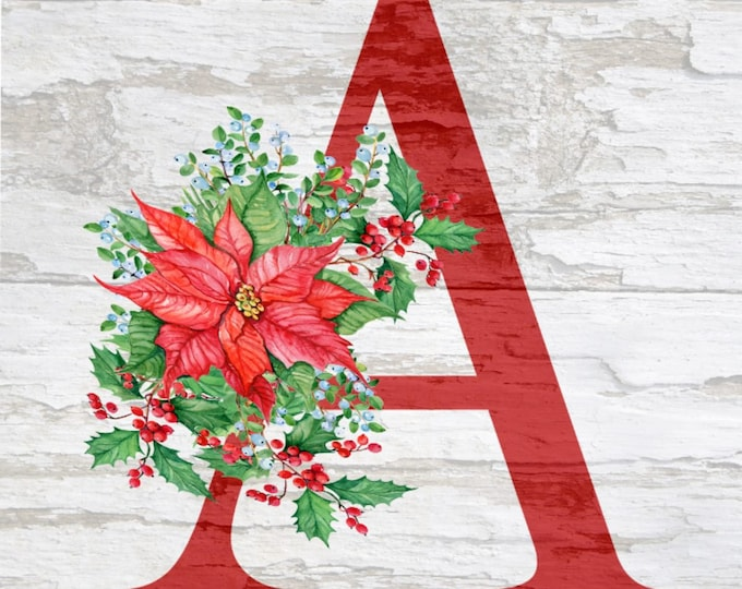 Last Name Letter, Christmas, Poinsettia  Personalized Pictures,  Simple Southern Decor, Magnetic Picture and Framing System