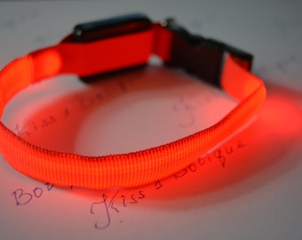 Red luminous collar for cats and small dogs for neck