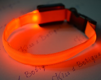 Orange luminous collar for cats and small dogs for neck
