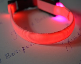 Pink luminous collar for cats and small dogs for neck
