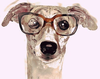 cute dog, puppy, adorable puppy, awesome, nerd, brown