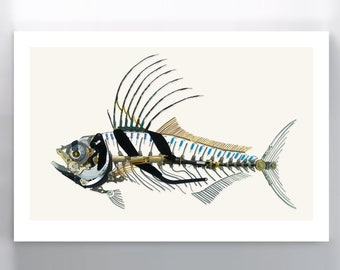 Roosterfish Signed Fine Art Print 10x15 in