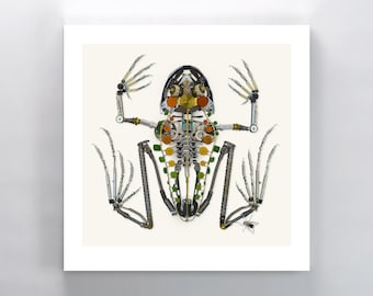 Frog and Fly Signed Fine Art Print, Frog Skeleton Print 10x10 in