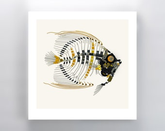 French Angelfish Signed Fine Art Prints 10x10 in