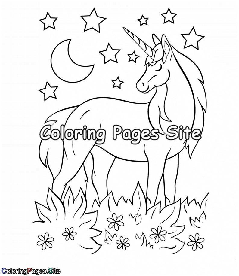 Amazing Unicorn Coloring Book for Kids 10 Unique Coloring   Etsy