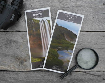 Plant and Bird Field Guides to Iceland