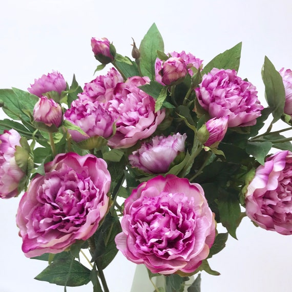 Purple duchesse peony single stem for diy floral arrangements etsy image 0 mightylinksfo