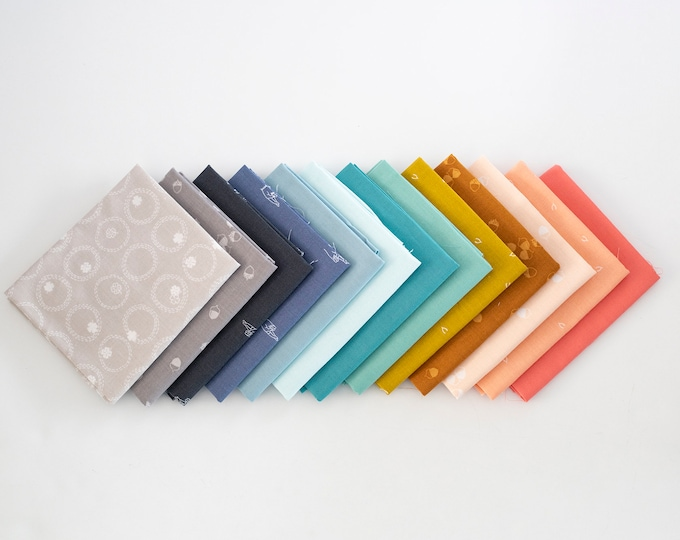 Muted Rainbow Plus Curated Fat Quarter Bundle