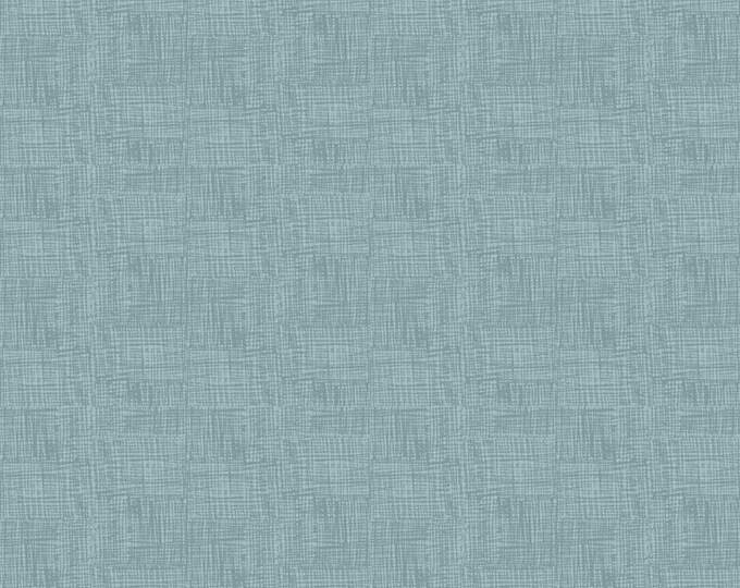 Fossil Rim 2 Scratch Blue by Deena Rutter for Riley Blake Designs