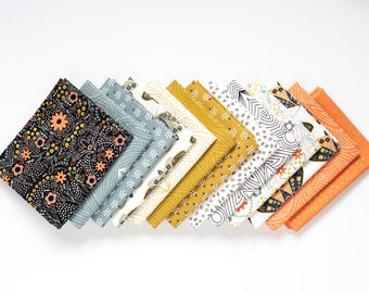 Dwell Possibility- 13 piece Curated Fat Quarter Bundle